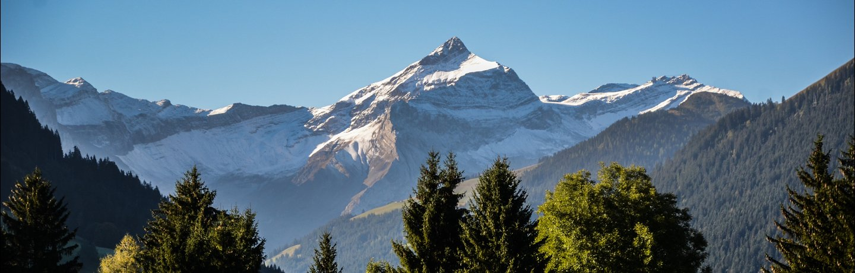 Park Gstaad Seminaire Meeting Event Demandes Informations Headband